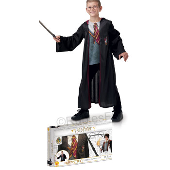 Costume Harry Potter...